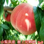 桃 もも 山梨県産 樹上完熟桃 大サービス5Kg箱