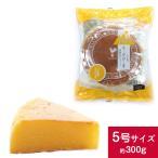 六甲山麓牛乳仕込み 遊酪舎しっとりしたちーずけーき チーズケーキ 5号 約300g ポイント消...