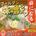 あみ印 ゴールデンみそラーメン 2食セット プロが認めた 白味噌に、ポークの旨味とにんにく、生姜の風味を利かせた味噌スープ ポスト投函便 送料無料