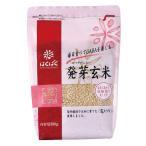 発芽玄米 契約栽培「花キラリ」 お好みの量で使える まとめ買い 簡単炊飯 はくばく 500g×8袋
