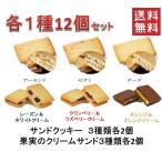 6種類 クリーム サンド 15個セット 老舗の人気 洋菓子 焼き菓子 【 送料無料 】 1000円 ポッキリ 送料無料 DM便【洋菓子】【果実】【焼き菓子】