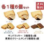Yahoo!プラムテラスネット6種類 クリームサンド 各1個 お試し 6個セット 老舗の人気洋菓子 送料無料 ポスト投函便  果実のクリームサンド