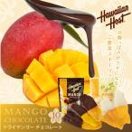 ドライ マンゴー チョコレート 10枚セット  溶ける可能性あり ハワイ土産で人気 選べる ダークチョコ ホワイトチョコ ポスト投函便 送料無料チョコ