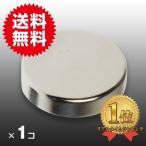 小さくても 超強力 磁石 1個 円柱形ネオジウム磁石 マグネット 20mm×5mm 鳩よけ