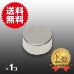小さくても 超強力 磁石 1個 円柱形ネオジウム磁石 マグネット 6mm×3mm 鳩よけ