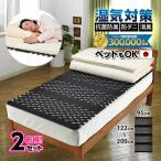 【2セット】日本製 すのこ ベッド すのこ型除湿マット 防ダニ抗菌防臭 備長炭 帝人 エアジョブ ベッド用 シングル 結露 すのこマット 除湿シート 吸湿シート