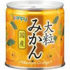 カンピー 大粒みかん 国産 缶 (M2号) 190g