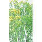 【プリザーブドフラワー・プリザーブド 花材】 1束 約20g 約40cm 防虫加工  *自然の生花や...