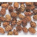 約1cm 約30g 約130個 *自然の生花や植物を原料としています。  *表示について 【この商品...