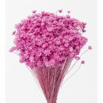 1束 約12g・約400本 約22Lcm 花径約0.3-1cm 防虫加工  *茎が黒ずんでいたり、綿...