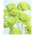1束10本 約25cmL 花径:約4cm 防虫加工  *自然の生花や植物を原料としています。 サイズ...