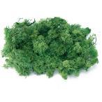 1袋(40g)  *自然の生花や植物を原料としています。 サイズ、色、形などは同一ではありません。 ...