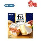 明治北海道十勝カマンベールチーズ(90g)9箱 クール便 ベーカマ  ワイン おつまみ
