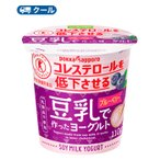 ソヤファーム 豆乳 ヨーグルトブルーベリー 110g×12コ×2 2ケース48個入 クール便