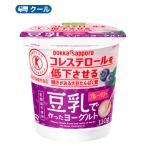 ソヤファーム 豆乳 ヨーグルトブルーベリー 110g×12コ×3 /3箱36個入 クール便