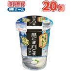 雪印 メグミルク アジア茶房 2層であじわう 黒ごま白ごまプリン170g×20コ 【クール便】