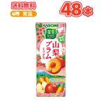 カゴメ 野菜生活100 山梨プラムミックス 195ml × 24本入×2ケース 紙パック