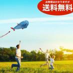 スポーツカイト イルカ型 2m 凧 送料無料(海外から直送)