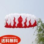 スポーツカイト パラグライダー型 デュアルライン 2m 凧 送料無料(海外から直送)
