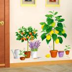 ウォールステッカー 花瓶 鉢植え 植物 壁紙 壁画 絵 可愛い インテリア 透明フィルム 防水 取り外し可能
