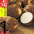 在庫限り 1kg さといも 土垂 里芋 栽培用 タネイモ 種芋 家庭菜園 栽培用 千葉産 米S 日にち指定不可 代引不可