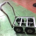 スチールハウスカー (鉄製) TC4510FE-10 シN直の画像