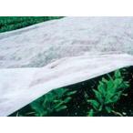寒冷紗 〈白〉 -230cm×100m