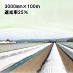 3000mm × 100m 白 遮光率25% ラウンドクール 遮光ネット 寒冷紗 JX ANCI タ種 代引不可
