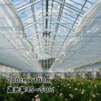 200cm × 100m 白 遮光率45〜50% ホワイトハイブレス 遮光ネット 4500SW 寒冷紗 ダイオ化成 イノベックス タ種 代引不可