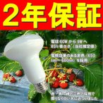 Yahoo!農業用品販売のプラスワイズ電照 いちご 用 LED 電球 DE-LB9S 消費電力9W ビニールハウス用 照明器具 E26 DELSOL社製 カ施 【代引不可】