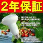 【10個】 電照 いちご 用 LED 電球 DE-LB12S 消費電力12W ビニールハウス用 照明器具 E26 DELSOL社製 カ施 【代引不可】