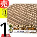 チェーンポット CP303 264鉢 タ種NDZ