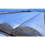 ノービエースみらい 0.1mm厚 470cm幅 20m 透明 農業用 ビニールフィルム 外張り 農ビ ハウス カ施 代引不可