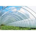 晴天ビニール 農ビ 厚さ0.1mm 幅540cm 長さ20m ビニールハウス 外張り用 農業用ビニールフィルム 防霧滴汎用タイプ アキレス カ施 代引不可