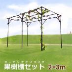 果樹棚セット 高さ約2m 土中50cm埋め込み時 これ1つで果樹棚ができる   幅2m 奥行3m