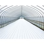 防草シート ホワイト グランドシート アルファ オフホワイト 1x100m 遮光率99% 白 反射 太陽光発電 農業 果樹園 トマト イチゴ ダイオ化成 タ種 代引不可