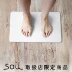 バスマット 珪藻土 ソイル soil GEM ひる石バスマット S ポイント2倍
