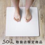 バスマット 珪藻土 ソイル soil GEM ひる石バスマット M ポイント2倍