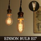 照明 電球 エジソン バルブ EDISON BULB E17 [Signature] あすつく対応