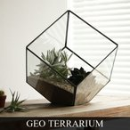 """ジオ テラリウム Sサイズ Geo Terrarium """"S"""""""