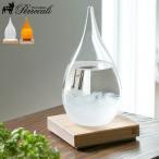 ストームグラス テンポドロップ Tempo Drop Perrocaliente [ TP-01 ]  送料無料 あすつく対応