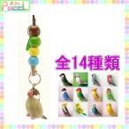 pi: 鳥 ビーズストラップ 4996740018022 キャラクター