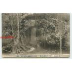 Xa4177 東京 井の頭恩賜公園 家光公御切付の旧跡