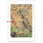 XyK0273 京都醍醐三宝院純淨観襖絵 桜楓の間の部分 堂本印象筆 *傷み有り 【アンティーク絵葉書