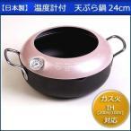 天ぷら鍋 温度計 IH対応 鉄 IH 揚げ物用鍋 揚げ物鍋 から揚げ 24cm
