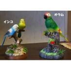動くおもちゃ 鳥の置き物 鳥のおもちゃ セキセイインコ 小鳥のおもちゃ