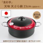 揚げ物 鍋 温度計付き 温度計付天ぷら鍋 鉄の揚げ鍋 天ぷら鍋 温度計