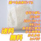 お米 お試し 無洗米も選べる白米・玄米 3合 ポイント消化 ゆめぴりか・あきたこまち・他