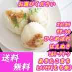 米 お米 30kg 選べる白米・玄米 20〜30kg/コシヒカリ・あきたこまち・他