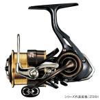 ダイワ(Daiwa) セオリー 2506